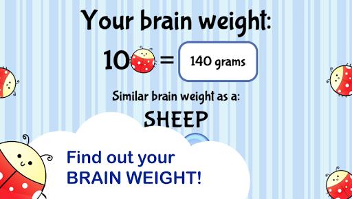 Brain Trainer with Ladybug