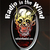 Radio In The Wind