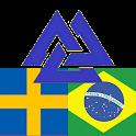 Brazilian Swedish Dictionary