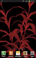 Screenshot of Bamboo Plant Yau 3D Parallax