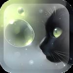 Curious Cat v1.2.0