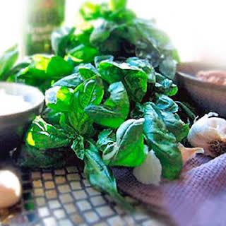Our Favorite Basil Pesto.