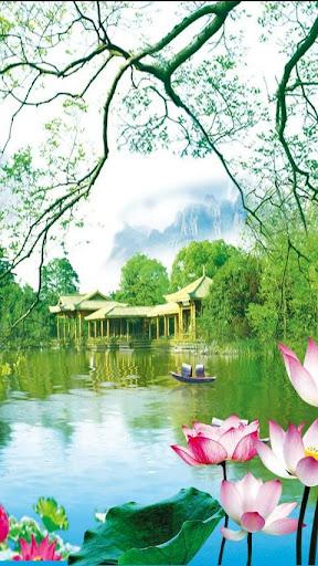 3D Lotus Pond Live Wallpaper