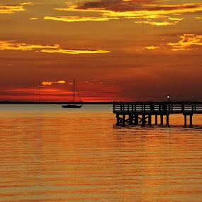 Sunset by Priscilla Renda McDaniel - Landscapes Sunsets & Sunrises ( orange, harbor, sunset, pier, yellow, sailboat,  )