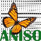 Acoustic Anisotropy