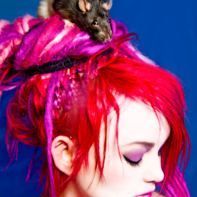 RATTY HAIR by Robert Hayman - Animals Other Mammals ( #fuschia, #elphaba, #dreadlocks, #rat, #red )