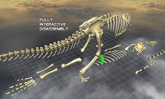 Screenshot of Body Disassembly 3D