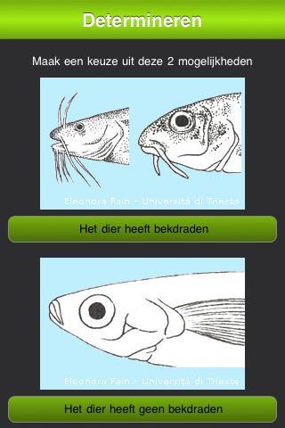 Zoetwatervissen van Nederland- screenshot
