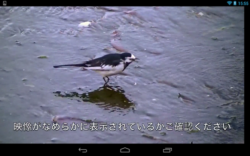 ワイヤレスTV StationTV 動作確認ツール