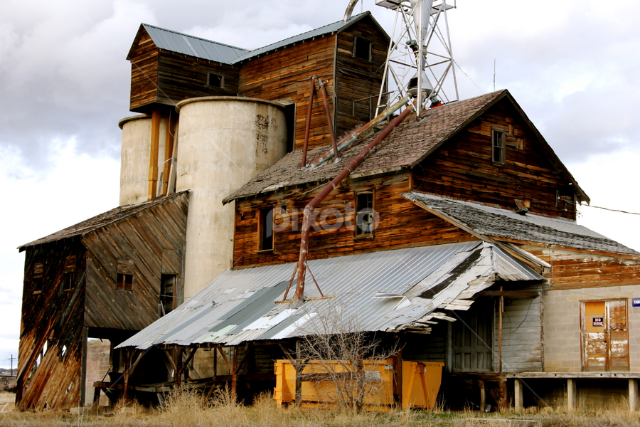 Old Mill by Dennis Robertson - Buildings & Architecture Decaying & Abandoned ( building, old mill, abandoned,  )