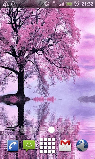 Pink Reflecting Tree LWP