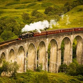 Jacobite 3 by Don Alexander Lumsden - Transportation Trains