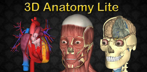 3D Bones and Organs (Anatomy) - Apps on Google Play