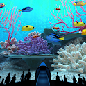 Coral Reefs World icon