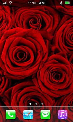 Roses Flowers live wallpaper