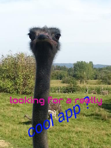 My Crazy App Pro