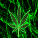 Pot Leaf Keyboard FREE! icon