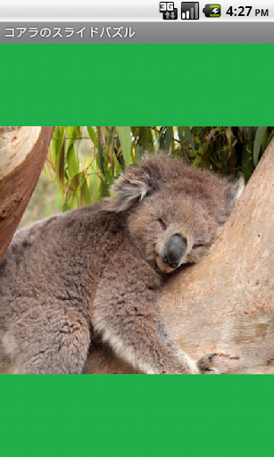 Koala Puzzle free