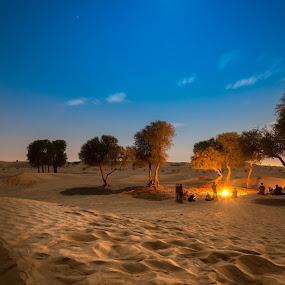 by Ashraf Jandali - Uncategorized All Uncategorized ( moon, desert, tree, stars, uae, dark, light, alone )