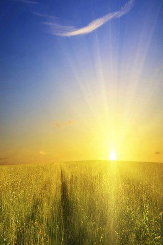 Sunrise wallpapers Android Apps on Google Play