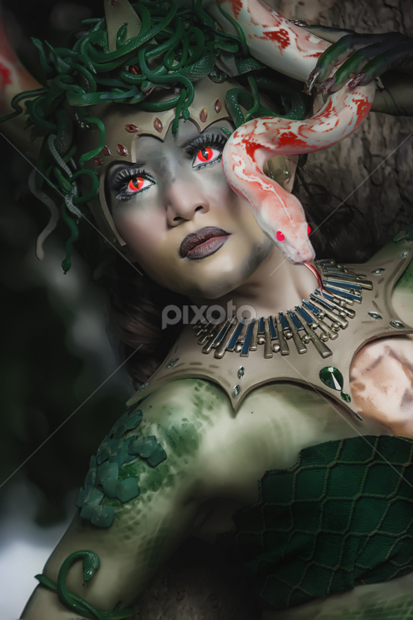 Medusa and Her Snakes by Tofan Wisuda Nova - People Body Art/Tattoos ( photofan )