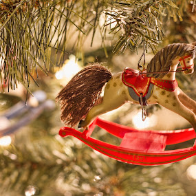 the ornament you hung on by Chris Pugh - Public Holidays Christmas ( tree, rocking horse, ornament, horse, light )
