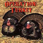 Operation: Turkey