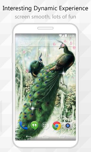 個人化必備APP下載 Peacocks Live Wallpaper 好玩app不花錢 綠色工廠好玩App
