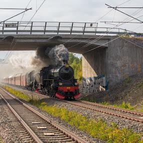 F1200 on its way to Gävle by Claes Wåhlin - Transportation Trains ( gävle, sweden, f1200, steam locomotove, train,  )