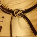 Heian Shodan icon