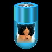 Battery Diary Widget