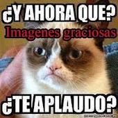 Imagenes Graciosas 2