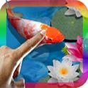 3D Koi Pond Live Wallpaper icon