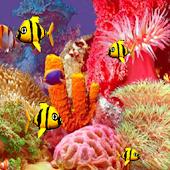 Screensaver Fish