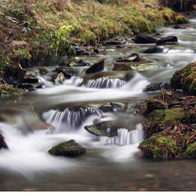 by Cornelis Cornelissen - Nature Up Close Water