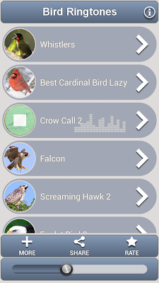 Bird Ringtones - screenshot