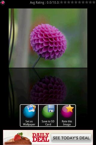Crystal Flower Wallpapers - screenshot