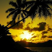 Golden Sunsets Live Wallpaper