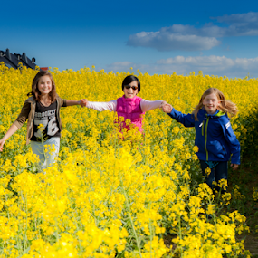 Playing at the Canola Field by Anita  Christine - Babies & Children Child Portraits ( canola, bright, sun coming through wildflowers, yellow, spring, kids in the summer, field, child, kids playing in summer, sky, girl, spring colorful flowers, blue, pink,  )