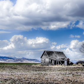 Grey Cabin And Blue Skys by Jim Moon - Buildings & Architecture Decaying & Abandoned ( idaho, cabin, abandoned cabin, old oregon trail, rocky mountain pass, pioneer home, color, colors, landscape, portrait, object, filter forge )