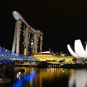 MBS by Stevie Go - Landscapes Travel ( reflection, night photography, marinabaysands, night, nikon, helixbridge, singapore, nightscape,  )