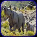 Rhino Wallpaper icon
