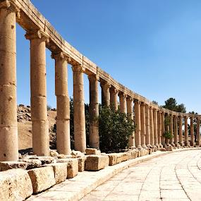 The Oval Forum by Carmel Bation - Buildings & Architecture Public & Historical ( jerash, jordan, roman ruins )