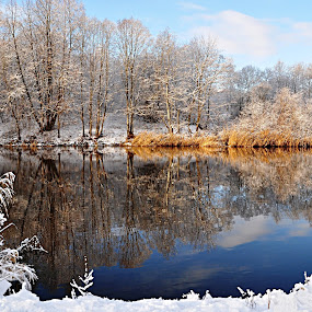 River by Eugenija Seinauskiene - Landscapes Waterscapes ( water, winter, nature, snow, trees, forest, landscape, river,  )