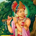 Meditation Music Swaminarayan icon