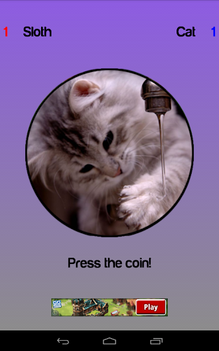 Cat or Sloth Coin Toss