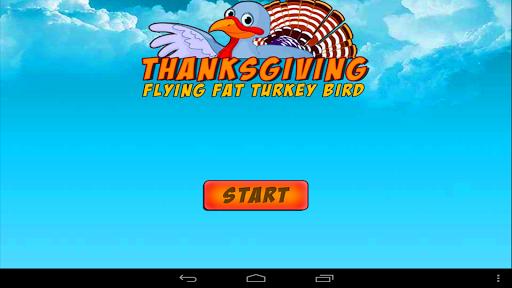 飛發土耳其鳥
