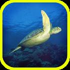 ATLAS: Sea Animals of Earth icon
