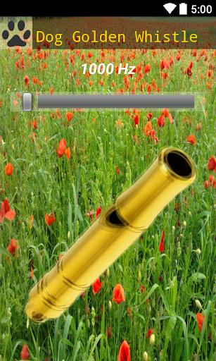 Dog Whistle Golden