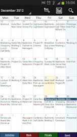 Business Calendar Pro Screenshot 3